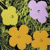 WARHOL, ANDY - FLOWERS FS II.67
