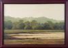 SACHITH DE SILVA - Sri lankan landscape