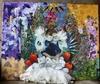 IVONNE LANNIN -  Frida Kahlo